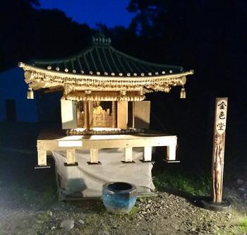 セミ温泉3.png